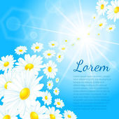 Background with blue sky and daisies — Vector de stock