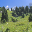 Mountain landscape Trans-Ili Alatau — Stock Photo
