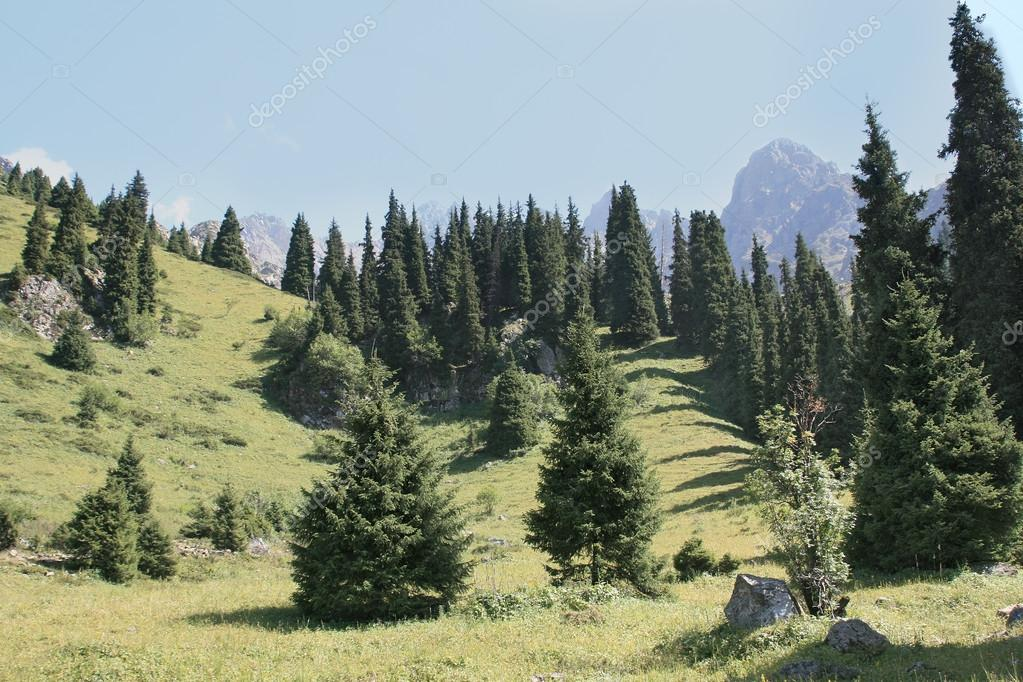 Mountain landscape Trans-Ili Alatau  Stock Photo #13369755