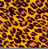Leopard animal image as background — Stock Photo
