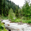 Landscape river mountain Central Asia — Stock Photo