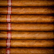 Background cigars in humidor — Stock Photo