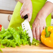 Woman's hands cutting vegetables — Stock Photo