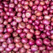 Onions Background — Stock Photo