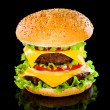 Stock Photo: Tasty and appetizing hamburger