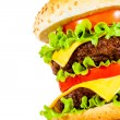 Tasty and appetizing hamburger on a white — Stock Photo