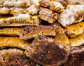 Honeycomb — Stock Photo