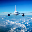 Passenger Airliner in the sky — Stock Photo #27153371