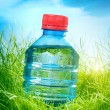 Water bottle on the grass — Stock Photo #32759847