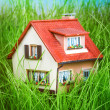 House on the green grass — Stock Photo #32759863