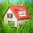 Stock Photo: House on the green grass
