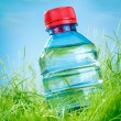 Water bottle on the grass — 图库照片