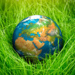 Concept - Earth Day — Stock Photo