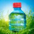 Water bottle on the grass — Stock Photo #32759965