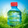 Water bottle on the grass — Stock Photo