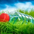 Water bottle on grass. — Stock Photo #32760031