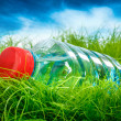 Stock Photo: Water bottle on the grass.