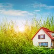 Stock Photo: House on green grass