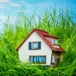House on the green grass — Stock Photo #32760119