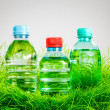 Stock Photo: Water bottle on the grass