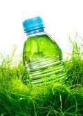 Bottiglia d'acqua sull'erba — Foto Stock