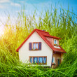House on the green grass — Stock Photo
