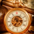 Vintage pocket watch — Stock Photo #35109969