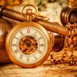Vintage pocket watch — Stock Photo #35110049