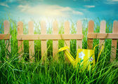 Wooden fence on blue sky background — Stock Photo
