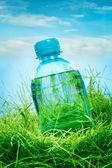 Bouteille d'eau sur l'herbe — Photo