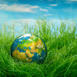 Concept - Earth Day — Foto de Stock