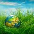 Concept - Earth Day — Stockfoto