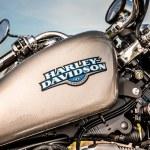 Постер, плакат: Harley Davidson gas tank Sportster 883