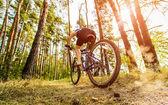 Kvinnor på cykel — Stockfoto