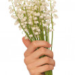 Lily of the valley — Stock Photo #12758806