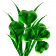 Shamrock as symbol of St. Patrick's day — Stock Photo