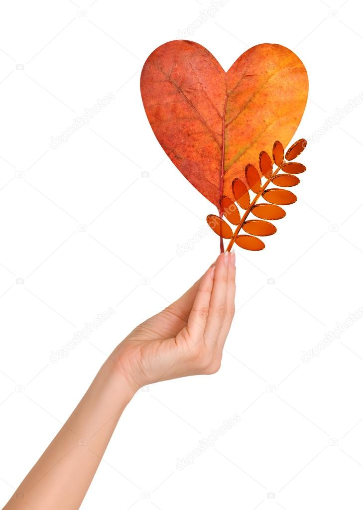 Woman holding autumn leaf as a  heart and glass rowan leaf — Stock Photo #12839342