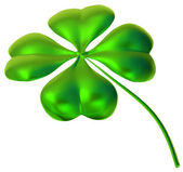 Four-leaf clover as symbol of good luck — Stock Photo
