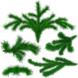 Set of Christmas green fir-tree branches — Stockfoto