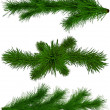 Stok fotoğraf: Set of Christmas green fir-tree branches