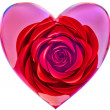 Red rose in glass heart for Valentine's Day — Stock Photo