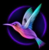 3d renderowania colibri ptaka - koliber — Zdjęcie stockowe