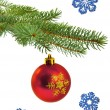 christmas tree branch with red ball — Foto de Stock