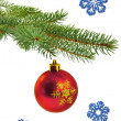 Christmas tree branch with red ball — Stock Photo #30529979