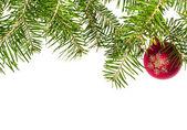 Christmas background — Foto de Stock