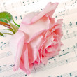 Rose and music — Stock Photo
