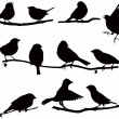Stock Vector: Silhouettes bird on branch