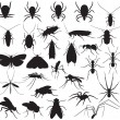 Stock Vector: Silhouette household pests