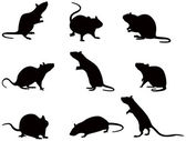 Silhouettes of rats — Stock Vector