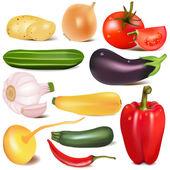 Instellen van plantaardige met gezamenlijke door raap aubergine — Stockvector